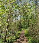 Purdown walk april 16